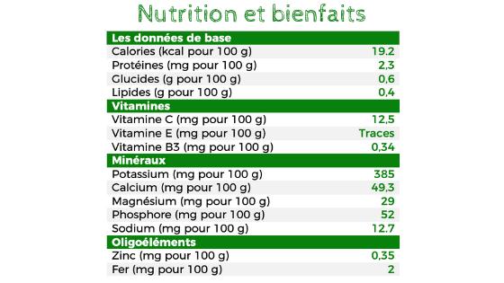 Nutrition et bienfaits de la mâche