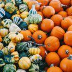 Mets du mois d'octobre – Courges et potirons