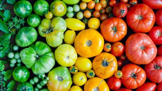 Plus les fruits et légumes consommés sont de saison et plus ils sont riches en antioxydants